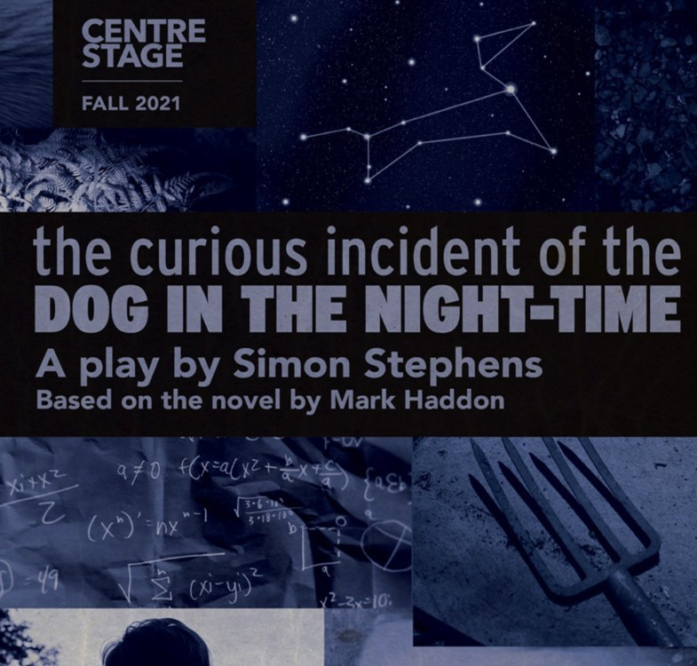 The Curious Incident graphic