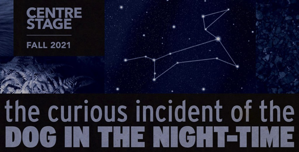 """The The Curious Incident graphic header with dark sky, pitch fork, dog star outline, and title"""" width="""